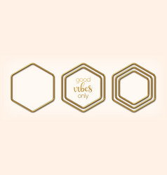 set abstract golden hexagonal frames vector image