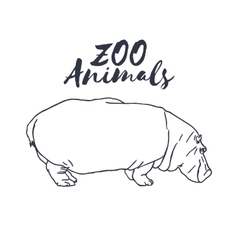Hand drawn isolated hippopotamus wild animal vector