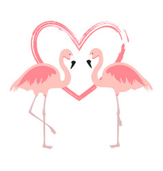Cartoon pink flamingos cute flamingo couple birds vector