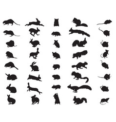 silhouettes rodents vector image