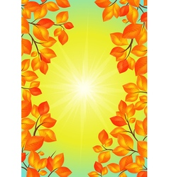 Yellow leaves frame vector image vector image