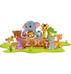 collection of zoo animals vector image vector image