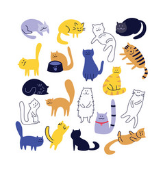 collection cute cats character in flat cartoon vector image
