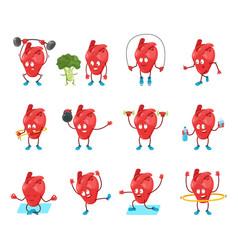 cute cartoon heart organ vector image
