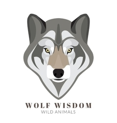 Cute grey wolf vector