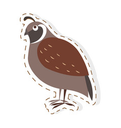 cute partridge bird cartoon flat sticker vector image