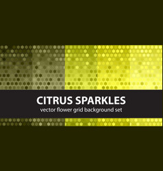 flower pattern set citrus sparkles seamless vector image