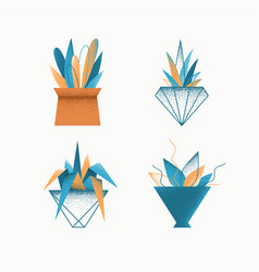 Indoor plants in pots vector