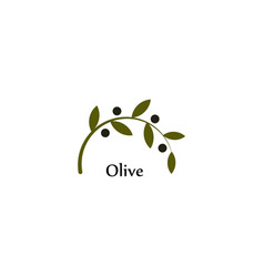 Isolated green olive branch logo olive oil vector