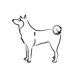 outline draw dog vector image