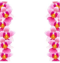 Pink vanda miss joaquim orchid border vector
