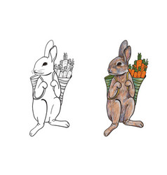Rabbit carry bag that full with carrot vector