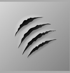 realistic torn grey paper four claws scratches vector image
