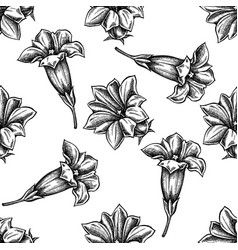 seamless pattern with black and white gentiana vector image