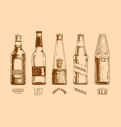 set of beer bottles vector image vector image