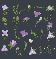 vintage purple floral set vector image