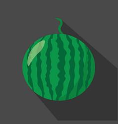 watermelon cartoon flat icondark background vector image vector image
