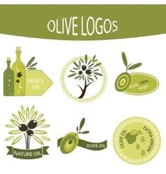 Set of olive oil logos labels badges vector image vector image