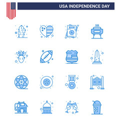 16 usa blue signs independence day celebration vector