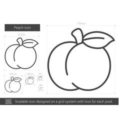 Peach line icon vector