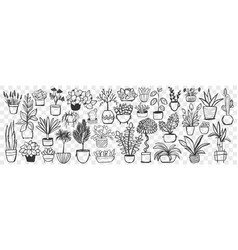 plants in pots hand drawn doodle set vector image