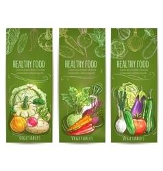 Vegetables healthy vegetarian food sketch banners vector