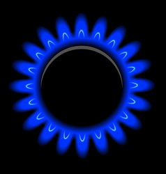 flames of gas on black vector image