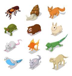 isometric domestic animals pets vector image