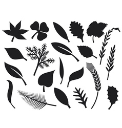 collection of leaf silhouettes vector image vector image