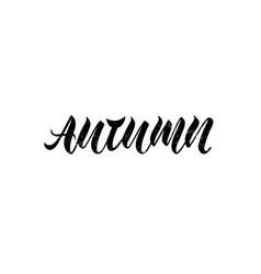 autumn for logotype flyer banner invitation vector image
