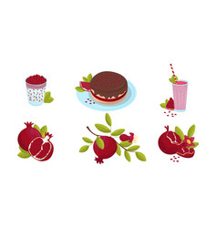Fresh ripe pomegranate and various dishes and vector