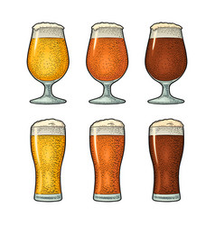 glass with three types beer vintage color vector image