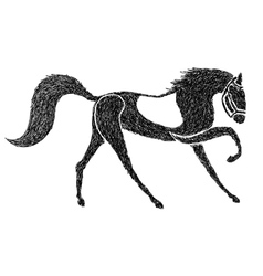 hand drawn horse vector image