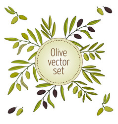 hand drawn olive branches vector image