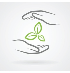 hands and green leaves vector image