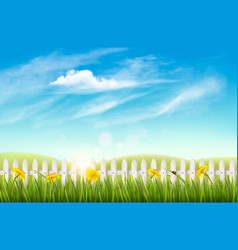 Nature background with green grass and french vector