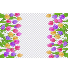 Spring floral border with colorful tulips with vector