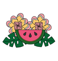 watermelon leaves flower tropical summer vector image