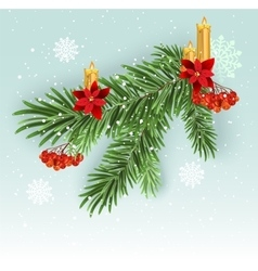 Christmas tree branch decoration Green lush vector image