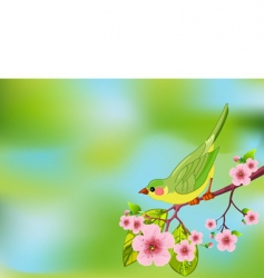 spring bird background vector image vector image
