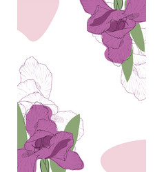 abstract of spring iris flower vector image