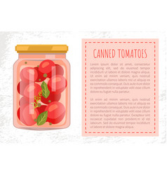Canned tomato veggies preserved food in glass jar vector