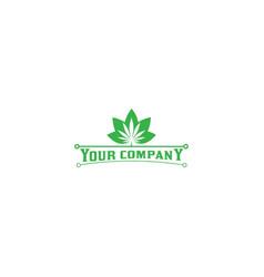 elegant cannabis flower logo design vector image