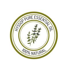 hyssop essential oil label aromatic plant vector image
