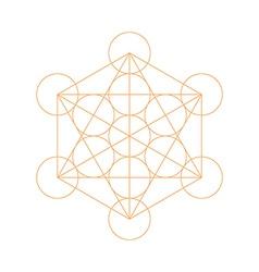 Metatrons cube - flower life vector