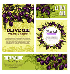 Olive oil creative banners vector