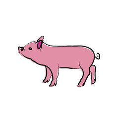 Outline draw pig vector