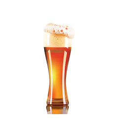 Photo-realistic beer glass isolated on white vector