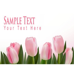 pink tulips bckground vector image