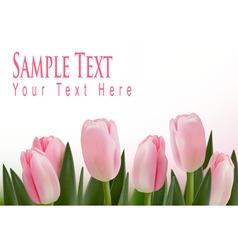 Pink tulips bckground vector